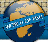 The World Of Fish