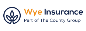 Wye Insurance Consultants