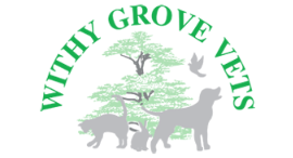 The Withy Grove