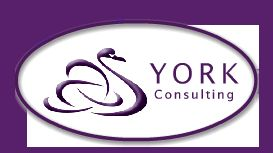 York Consulting